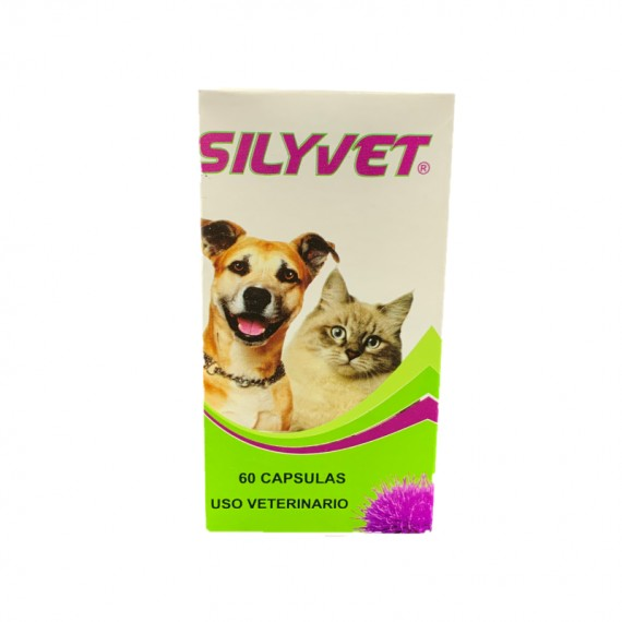 SILYET 60 CAPSULAS